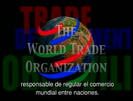 Showdown in Seattle: Cinco Dias que Hicieron Tambalear la WTO Parte 5: Como se Percibe la Democracia